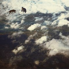 All sizes | The Expedition | Flickr - Photo Sharing! #sky #photo #cloud #dog