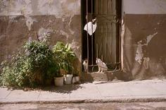 """Cuba"" by Photographer Alba Yruela"