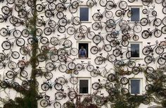 Bikes on the wall #bikes
