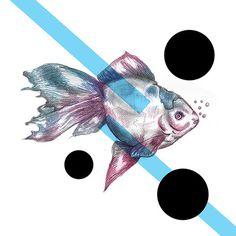 YOU CAN BUY IT HERE #illustrations #polak #polska #victim #artis #design #poland #logo #project #illustrator #fish #moda #de #sztuka #fashion #suda #mateusz #graphic #ilustracja #mateuszsudacom #art #artysta