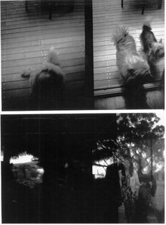 Don't look at me, i'm only breathing.. S|11|12 #white #multiple #black #diana #exposures #and #vineyards #friends