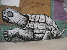 Artist Phlegm and his turtle street art