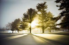 Flickr: IanAltamore.'s Photostream #sharp #sun #beam #through #snow #night #break #shadow #glow #light #trees #winter
