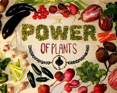 The Power of Plants Booklet on Behance