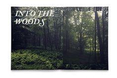 Fallzine - DLA #zine #woods #fallzine #nature #photography #seasonzine #trees #typography