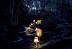 evolusjon_03.jpg 620×431 pixels #lamp #forrest #light