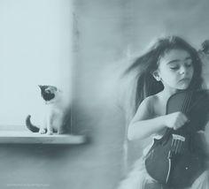 500px / Photo #violin #portrait