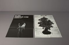 Blake Hamster. Marken- und Produktentwicklung #design #paper #poster