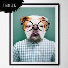 #animals #clothe #fashion #hipster #dog #poster