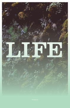 #poster #oregon #forest #typography #life #gradient