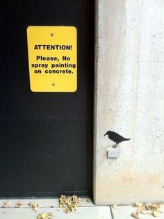 ETHAN CLARK #concrete #graffiti #stencil #shape #illegal #painting #crow #spray