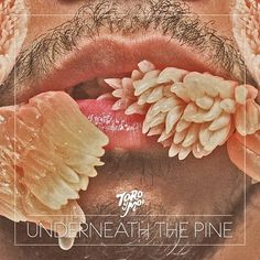 TORO-Y-MOI-UNDERNEATH-THE-PINE.jpg (JPEG Image, 900x900 pixels) - Scaled (97%) #album #y #toro #cover #the #moi #photography #underneath #pine