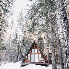 studio in the woods. i will make this one day #build #woods #home #space #landscape #cottage #cabin #forest #trees