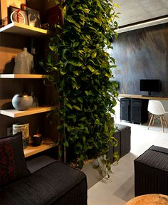 Integrated Green Wall at New Office of Yakusha Design -#office, office design, office space, #interior, interior design