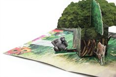 Rainforest Pop-Up Mailer on the Behance Network #pop #rainforest #behance #up #network #mailer