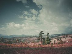 Valley #limited #edition #pink #print #landscape #valley #mountains