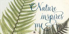 Natura - Webfont & Desktop font « MyFonts #calligraphy #script #writing #nature #handwritten #type