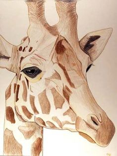 Campbell1.jpg (JPEG Image, 360x479 pixels) #illustration #giraffe