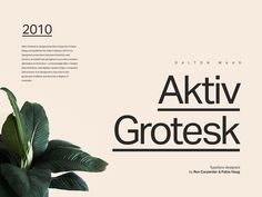 typography, layout