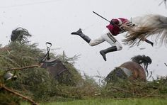 Sports, First Prize, Singles - Grand National Steeplechase by Tom Jenkins