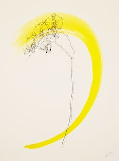 Lines of Beauty by Venetia Norris #illustration #yellow #drawing