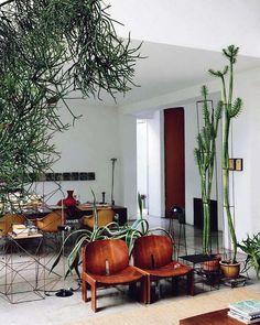 """The """"Cactus Temple,"""" aka designer Maurizio Zucchi's home"""