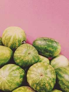 Sandia #color #palette #watermelon