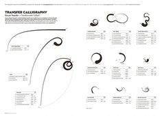 All sizes | Transfer Calligraphy | Flickr - Photo Sharing! #infographic #data #graphic #visualization