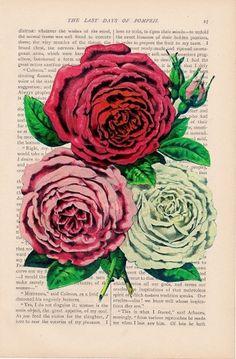 il_fullxfull.203835629.jpg 788×1,200 pixels #romance #book #roses