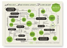 Graphic-ExchanGE - a selection of graphic projects #flowchart #poster #museum