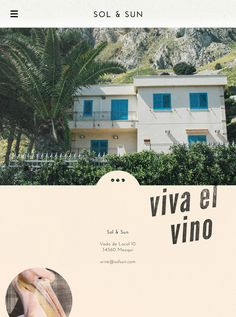 Sol & Sun - Amy Martino - Design + Art Direction #wine #web design
