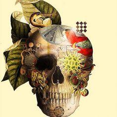 Ilustración y collage digital de LUIS TOLEDO : ColectivoBicicleta | ilustración y diseño Colombia y Latinoamerica