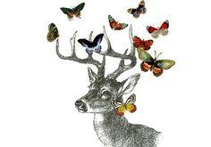 coqueterías - (via misswallflower) #bambi #illustration
