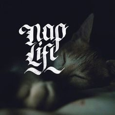 💤 Napping is Life 💤 - 📷by @mighango / @unsplash - #tyxca #letteringpractice #typespire #nap #naplife #calligraphy #calligraphypract