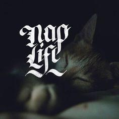 💤 Napping is Life 💤 - 📷by @mighango / @unsplash - #tyxca #letteringpractice #typespire #nap #naplife #calligraphy #calligraphypract