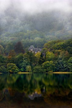 Nestled by Andy Wellings