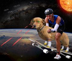 1 Contact | #random #skate #photoshop #weird #basketball #dog