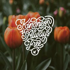 Kindness is Always free