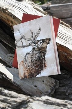 Snail's Pace Elk Illustration - Note Card