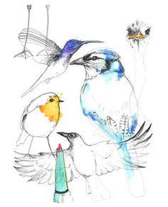 Birds in Birds