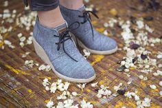 _MG_7672 #zacher #shoes #catalog #toms #kevin