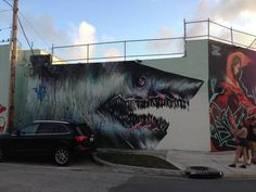 More r/Graffiti #graffiti #toof #shark