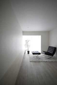Linearity by Jun Murata