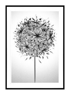 Kai and Sunny | Stolen Space gallery - London - 2011 - The Flower Show #art #drawing #kai and sunny