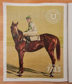 Portland Meadows: Brand ID, Collateral #official #manufacturing #horse #branding #the #company #race