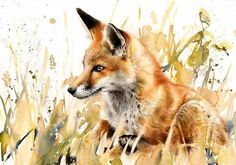 "Saatchi Online Artist: Lucy Newton; Other, Mixed Media ""Red Fox"". #inspiration #fox #art #painting"