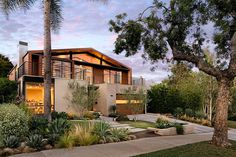 Cohen Residence – A Hollywood Writer's Family Treehouse