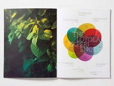 Kelly Dorsey #bright #sun #loyola #print #look #book #photograph #dorsey #kelley