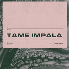 Tame Impala cover #cover #typography