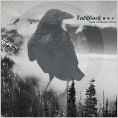 Fake Album Covers #album #damion #thecollectiveloop #bird #cover #schweizer #fake #mountains